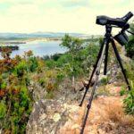 Birding en Cordobilla de Lácara